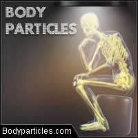 bodyparticles